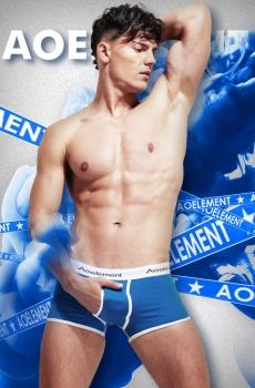 Đồ lót nam boxer cotton cao cấp xanh 347D