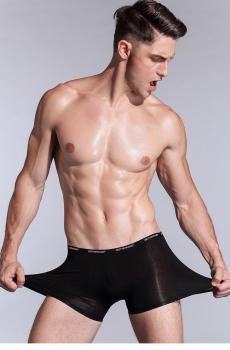 Combo 4 quần lót nam boxer vải tơ tre Bamboo CB3